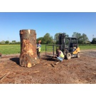 English Oak Tree being split & planked!